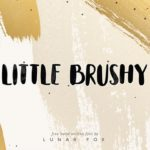 Little Brushy Font