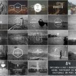 84 Elegant Vintage Insignia Logo Templates (PSD, AI)