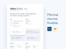 Minimal Resume Freebie